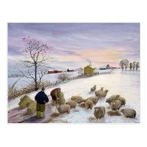 Feeding sheep in winter postcard