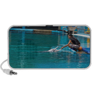 Feeding the dolphins as part of Dolphin show Laptop Speaker