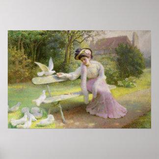 Feeding the Doves Poster