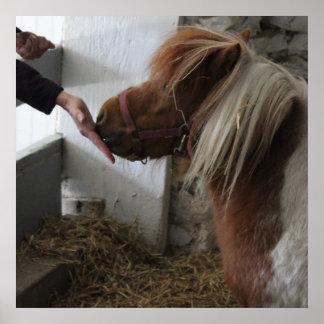 Feeding the Horse Poster