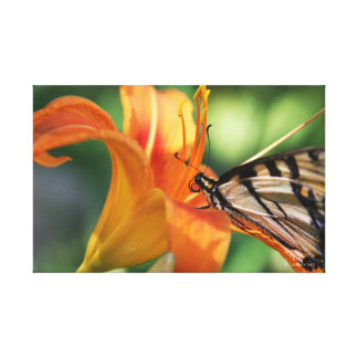 Feeding Time at the Lillies 6 Canvas Print
