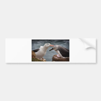 Feeding time bumper sticker