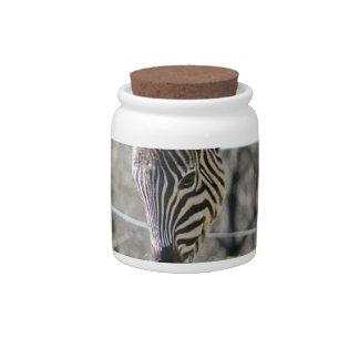 Feeding Zebras Candy Jar
