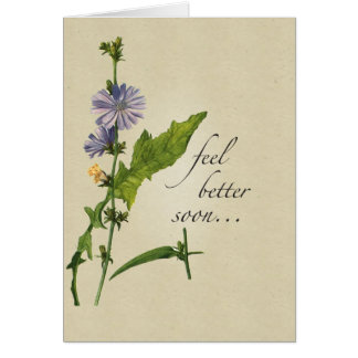 Feel Better Wildflowers, Religious Tone Greeting Card