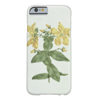 Feel-Fetch (Hypericum quartinianum) (w/c over grap Barely There iPhone 6 Case