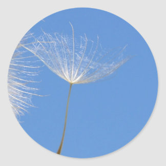 Feel free - Flying Dandelion seed Classic Round Sticker