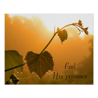 Feel His Presence - Motivational Nature Posters