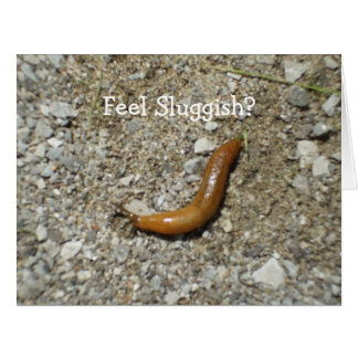 Feel Sluggish? Slug Card