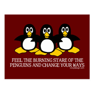 Feel The Burning Stare Of The Penguins Postcard