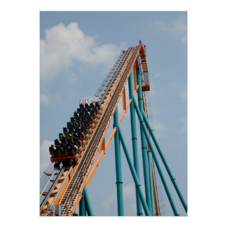 Feel the G-forice Of A Rollercoaster Poster