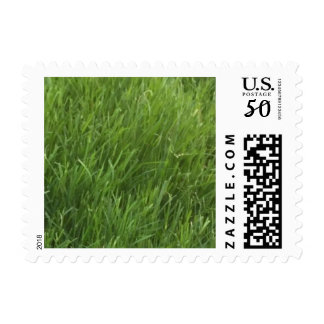 Feel The Grass - Postage Stamp