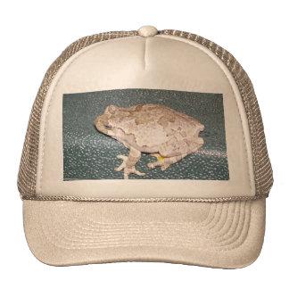 Feelin' Froggy Hat