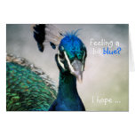 Feeling a bit blue? stationery note card