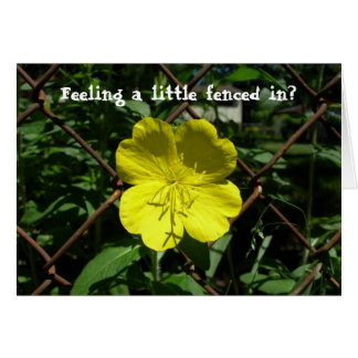 Feeling a little fenced in? greeting cards
