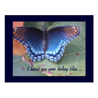 Feeling Blue Butterfly Postcard