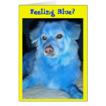 Feeling Blue? get well card