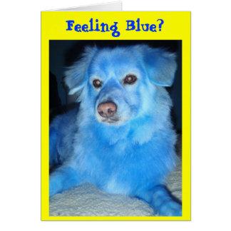 Feeling Blue? get well card