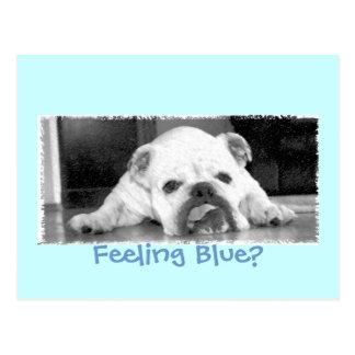 Feeling Blue? Postcard