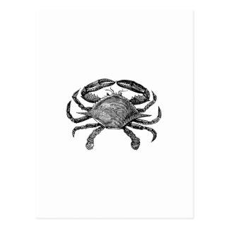 Feeling Crabby Black Postcard