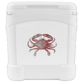 Feeling Crabby Red Pencil Crab Sketch Cooler