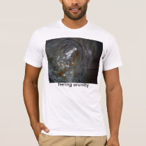 Feeling Crumby T-Shirt