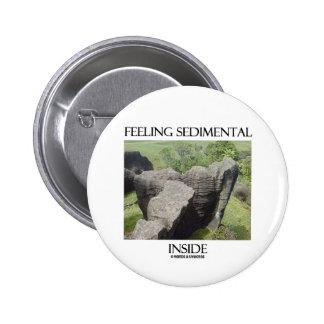 Feeling Sedimental Inside Limestone Geology Humor Buttons