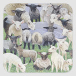 Feeling Sheepish Square Sticker