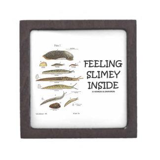 Feeling Slimey Inside (Slugs) Keepsake Box