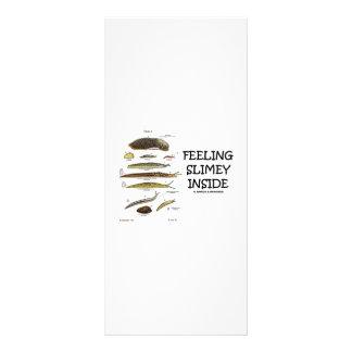 Feeling Slimey Inside (Slugs) Rack Card