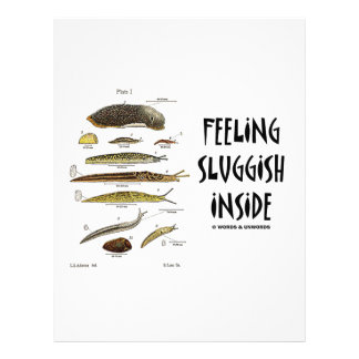 Feeling Sluggish Inside (Slugs) Letterhead