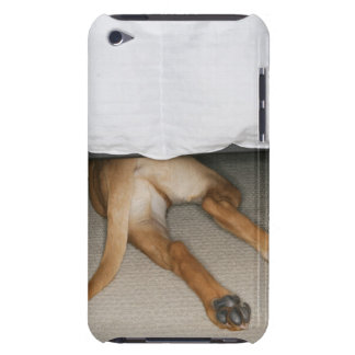 Feet and tail of yellow lab dog hidden under bed iPod Case-Mate case