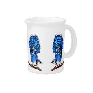 Feisty Male Blue Jay Birds Pitcher