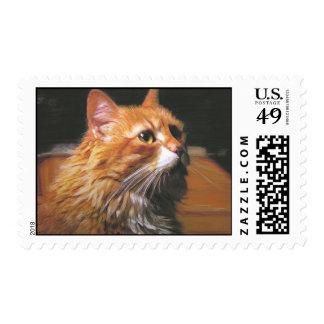 feldie postage