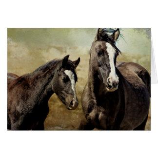 Feldspar and Ohanzee - Pryor Mustangs Card