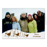Felices árboles de navidad y tres pájaros tarjetas