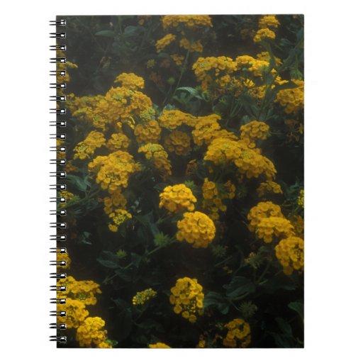 Felices maravillas amarillas cuaderno