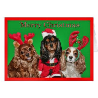 Felices Navidad con tres perros de aguas de rey Ch Tarjeta De Felicitación