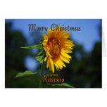 Felices Navidad de Kansas Felicitacion