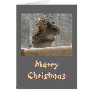 Felices Navidad de la ardilla Tarjeta De Felicitación