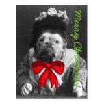 Felices Navidad de tía Maude Dog Postales
