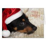 Felices Navidad del Dachshund