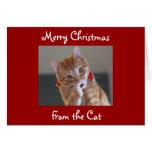 Felices Navidad del gato Felicitaciones