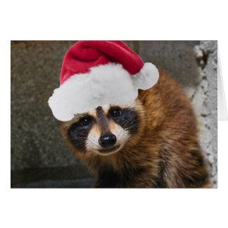 Felices Navidad del mapache Tarjeta De Felicitación