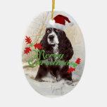Felices Navidad del perro de aguas de saltador Ornamento De Reyes Magos