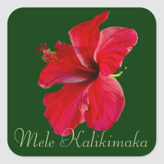 Felices Navidad en Hawaii Mele Kalikimaka Colcomanias Cuadradas