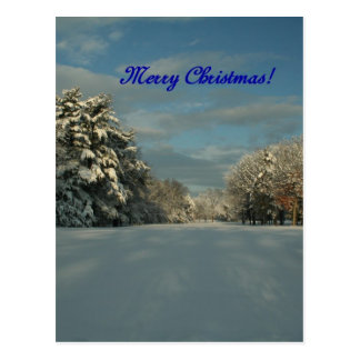 ¡Felices Navidad!  ¡Escena de la nieve! Postal