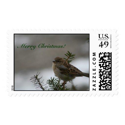 ¡Felices Navidad!  Gorrión Timbre Postal