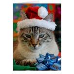 Felices Navidad (incluso si usted es travieso) Tarjeton