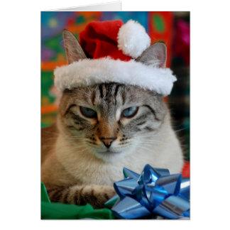 Felices Navidad incluso si usted es travieso Tarjeton