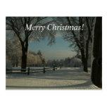 ¡Felices Navidad!  ¡País de las maravillas del inv Tarjetas Postales